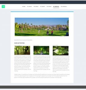 Website Design Layout1